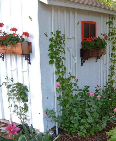 garden shed with trellis window boxes and faux window cute