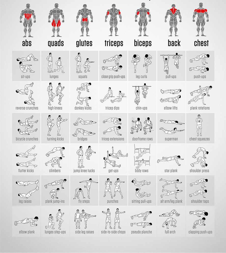Body Fitness Chart Bire 1andwap Com Rh Upper Workout Without Equipment Strength Exercises