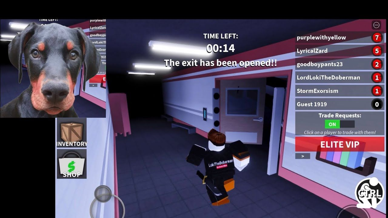 New All Working Free Codes Guesty Chapter 2 How To Escape Guesty Chap In 2020 Roblox Used Cameras Coding
