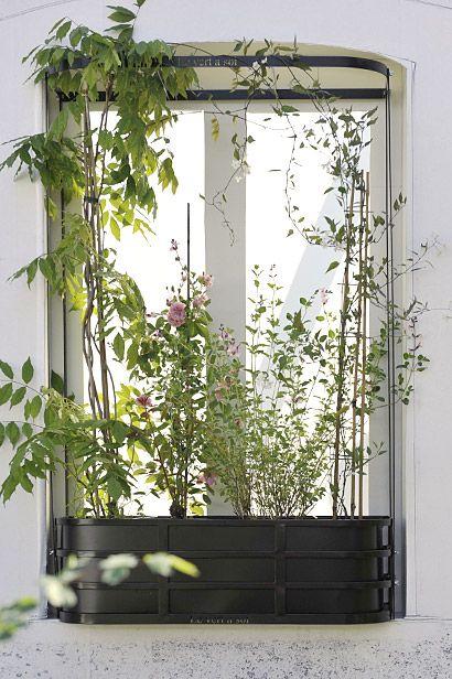 L arceau le vert soi v g talisation fenetre pinterest les verts vert et balcons - Fixer jardiniere rebord fenetre ...