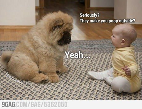 Cute baby talking to a fluffy dog