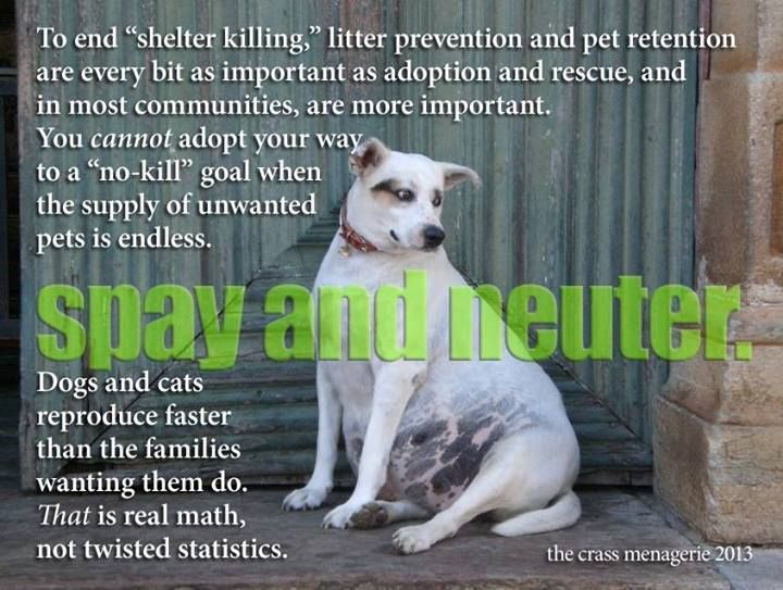 Spay & Neuter your pet! I have four dogs and all of them