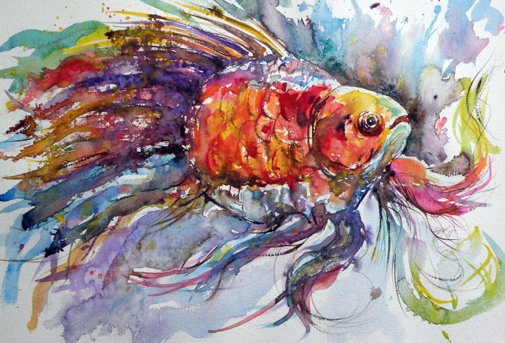 Artfinder Fish By Kovacs Anna Brigitta Original Watercolour