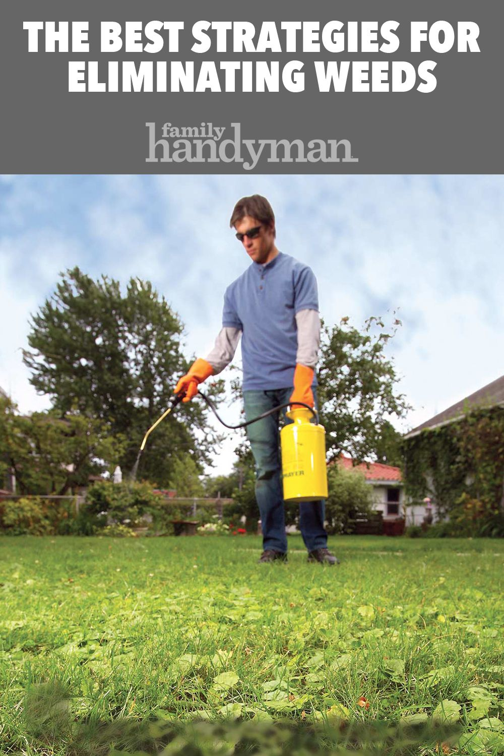 How To Eliminate Lawn Weeds Lawn Care Tips Landscaping Tips