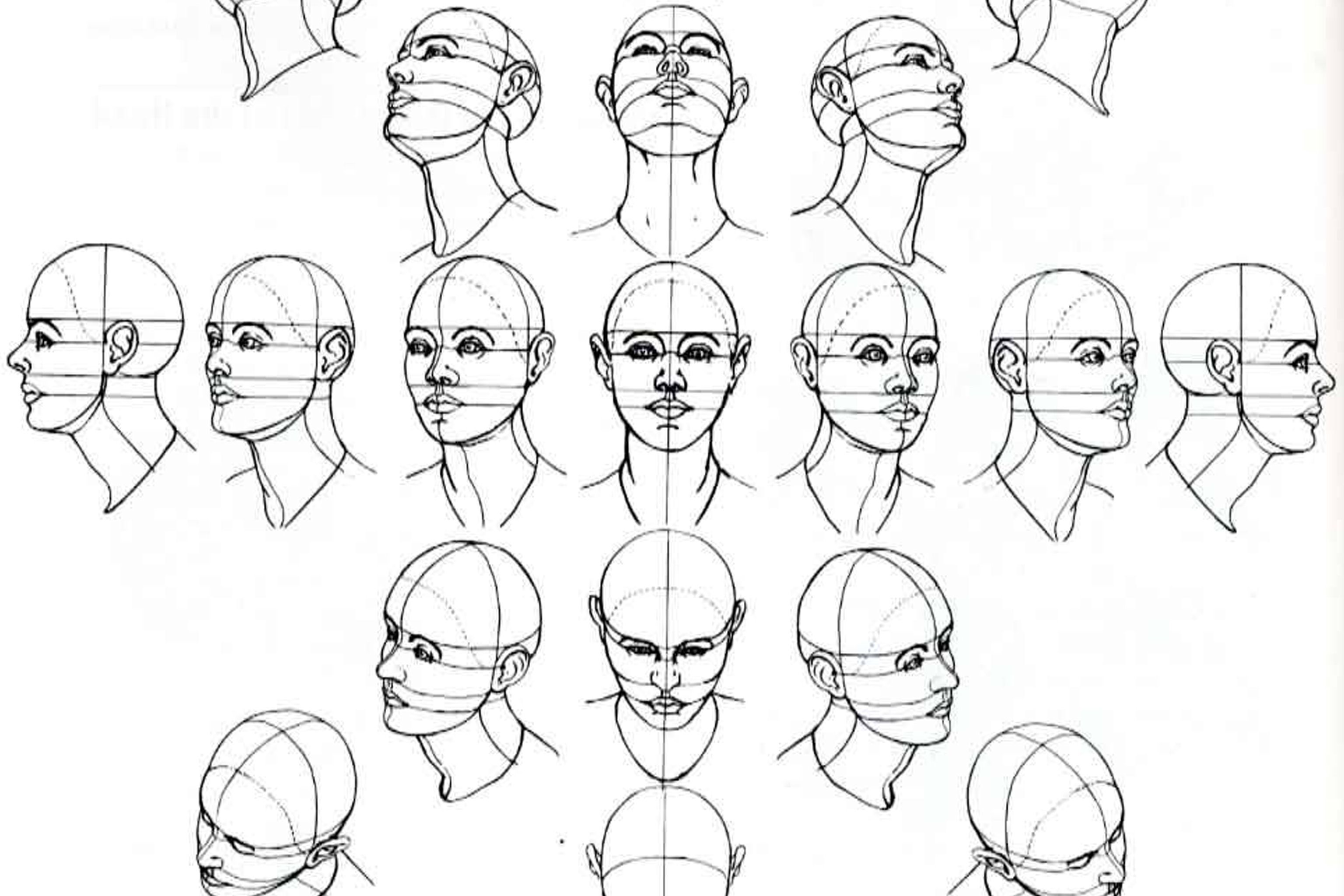 Drawing Face Looking Up Drawing A Face Looking Down How To Draw A Face Looking Up Solution Drawing The Human Head Human Drawing Sketches