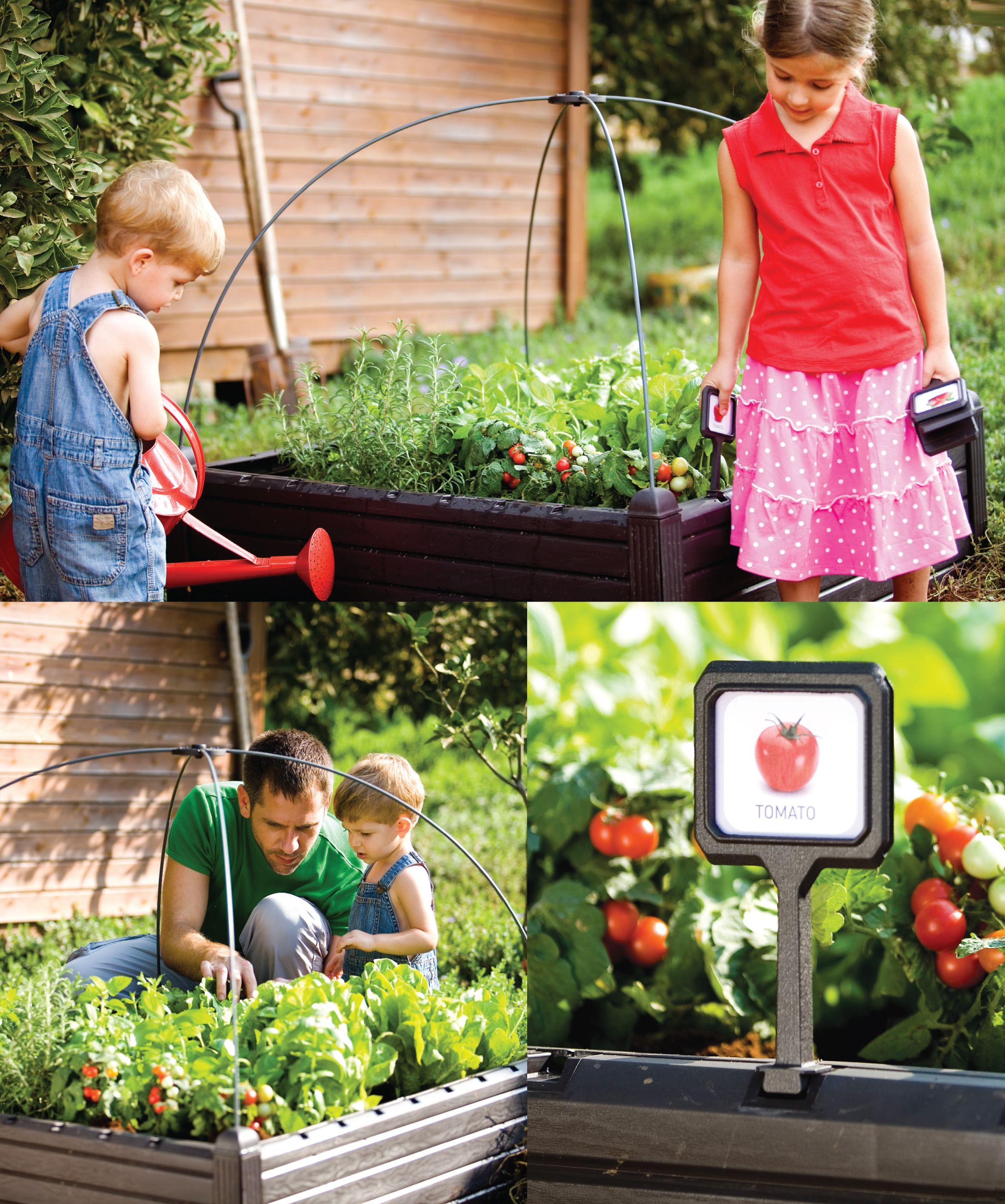 Aki bricolaje jardiner a y decoraci n huerto urbano bajo efecto madera incluye marcadores de - Bricolaje y decoracion ...
