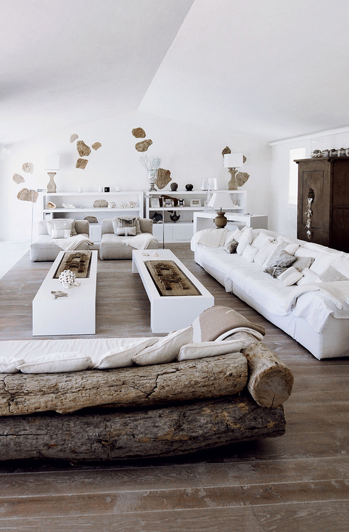 rustic living room.  In love with the super rustic couch but the stark white modern.