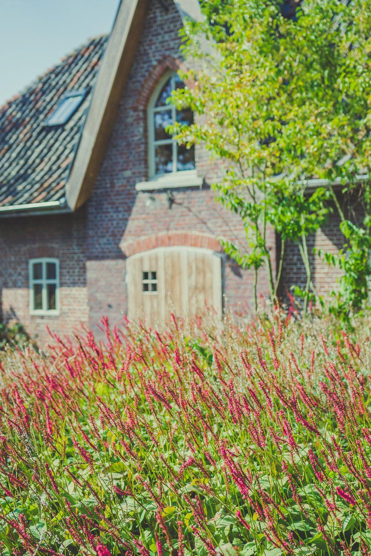 Persicariaborders in een strak landelijke tuin for Tuinarchitect kleine tuin