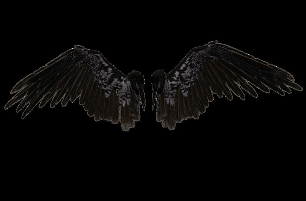 Cover Tutorials Angel Wings Png Wings Png Wings Tattoo