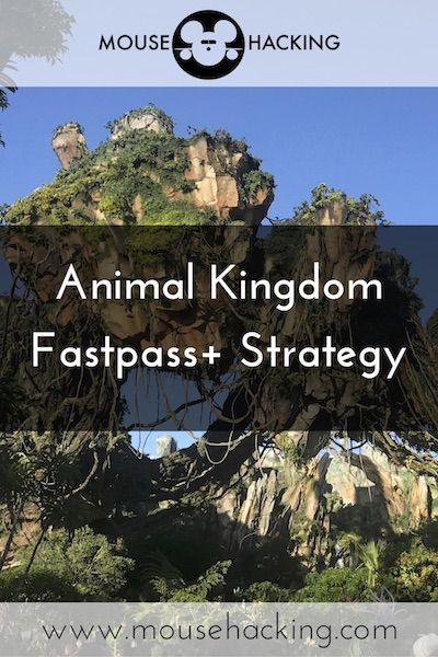 Animal Kingdom FastPass+ Tiers And Strategy 2019-2020 - Mouse Hacking #animalkingdom