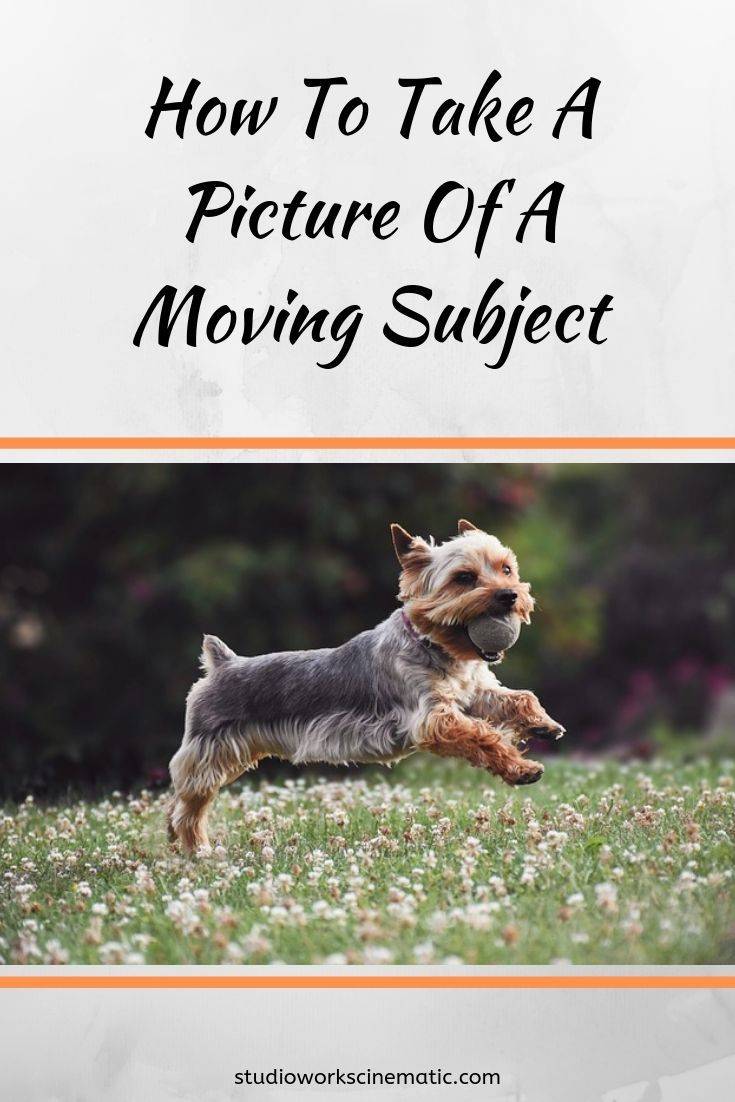 How To Take A Picture Of A Moving Subject [Follow These