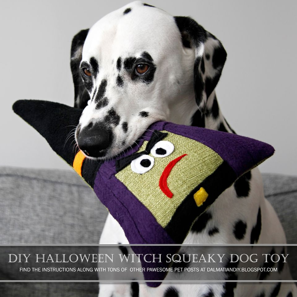 Diy Squeaky Stuffed Witch Halloween Dog Toy Smart Dog Toys Dog