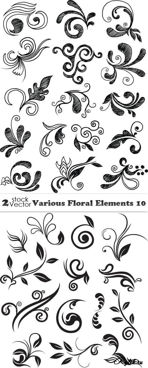 Растительные узоры и завитки - векторный клипарт | Каллиграфия ...