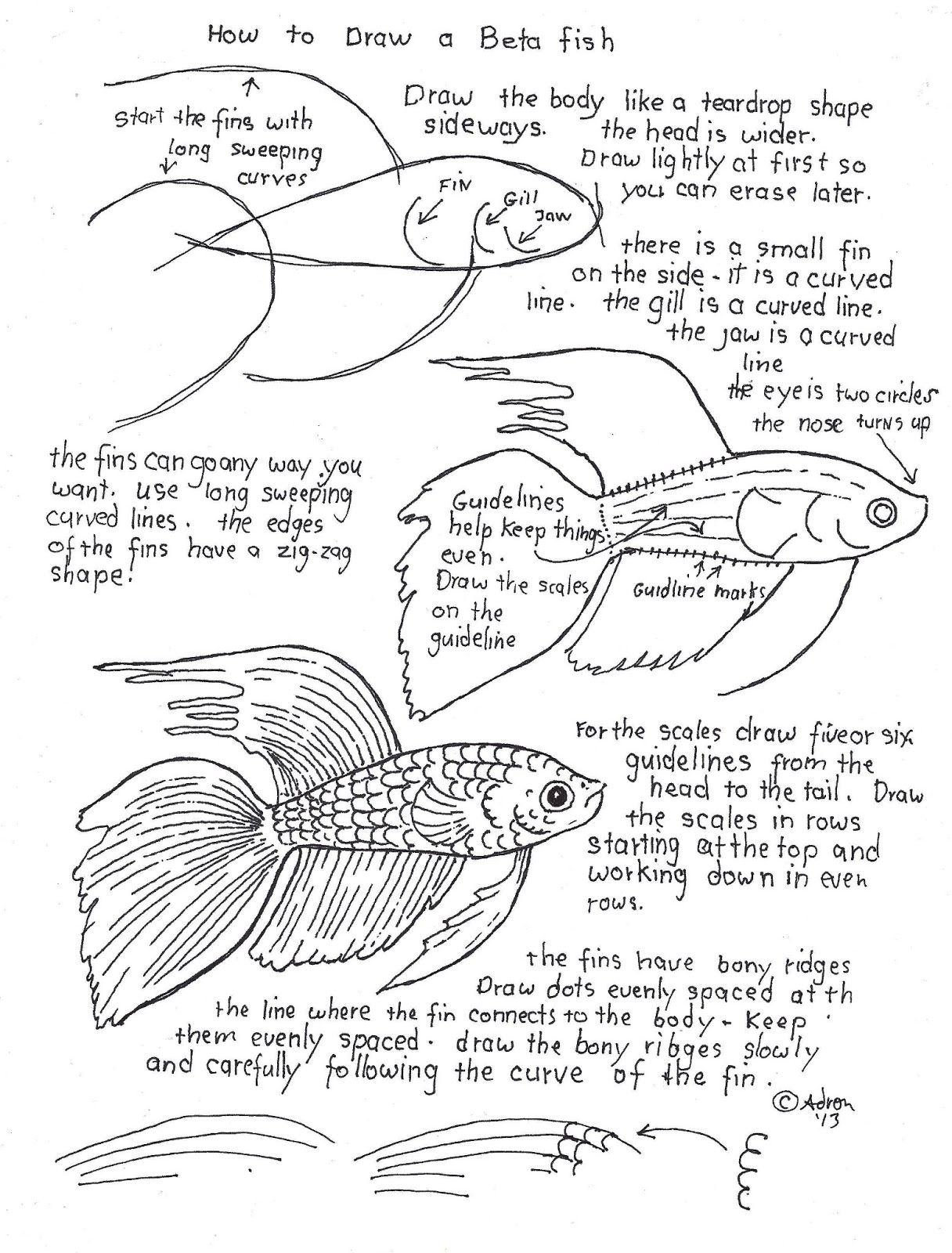 How To Draw Worksheets For The Young Artist Fish Watercolor Subject