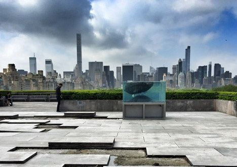 The Roof Garden Commission: Pierre Huyghe