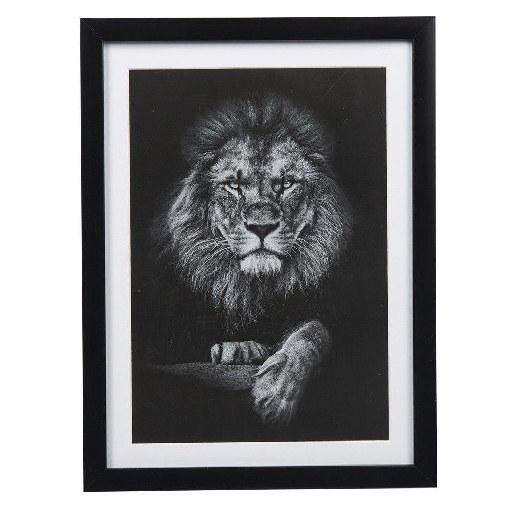 Soldes 2020 Affiche Et Cadre Deco Gifi Lion Noir Et Blanc Cadres Noir Et Blanc Lion Noir