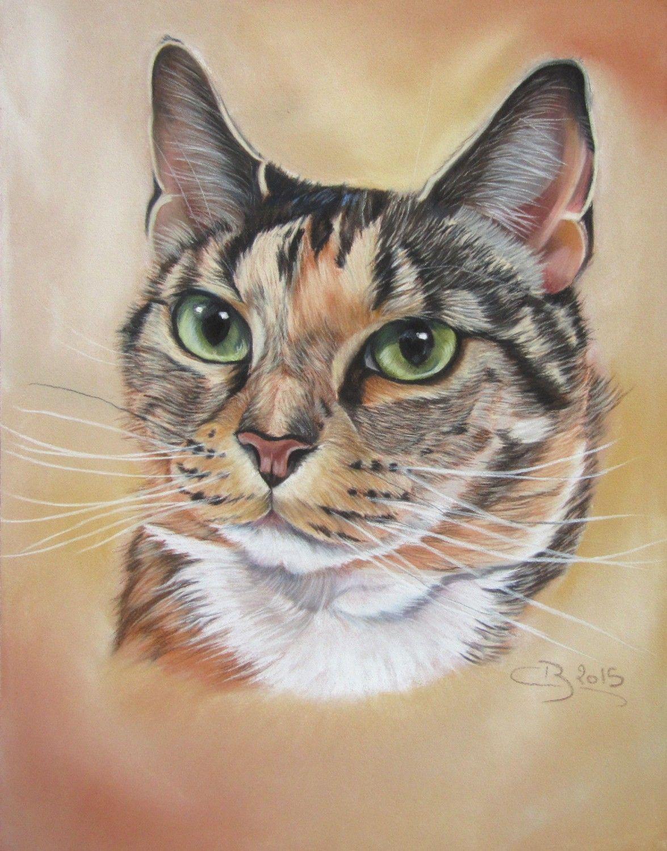 r sultat de recherche d 39 images pour dessin de pastel de chat pastel sec pinterest pastel. Black Bedroom Furniture Sets. Home Design Ideas