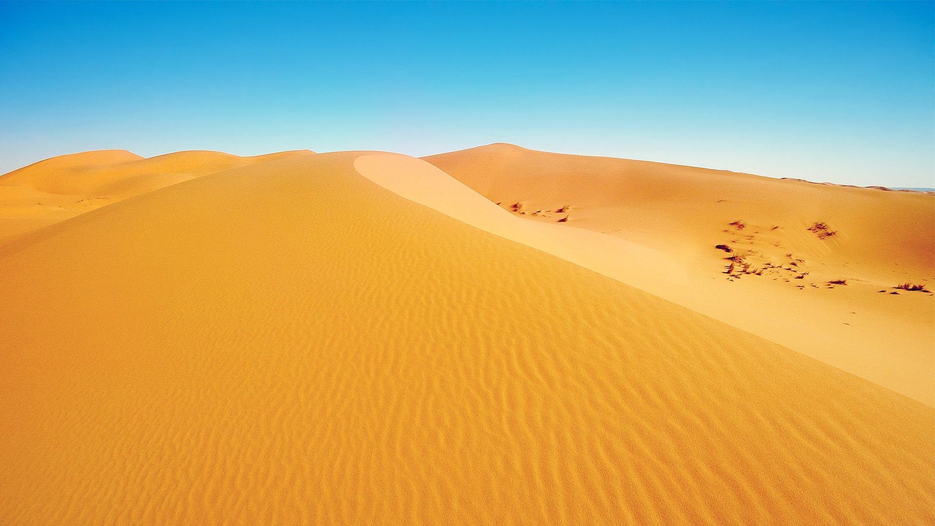 Sahara Desert Sand Wallpaper Travel Hd Wallpapers Desert
