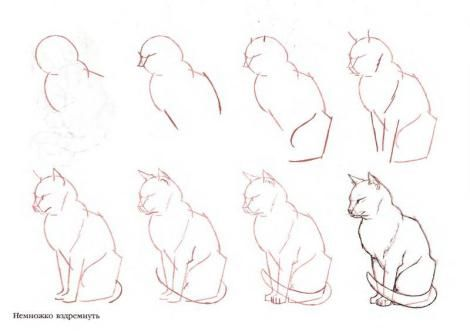 Paso A Paso Para Dibujar A Lapiz Como Dibujar Un Gato Dibujos De Gatos Como Dibujar Animales