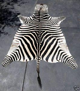 Zebra Skin Rug African Zebra Skin Rug Zebra Zebra Rug