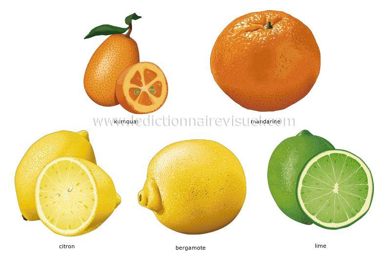 alkaline fruits lima fruit in english