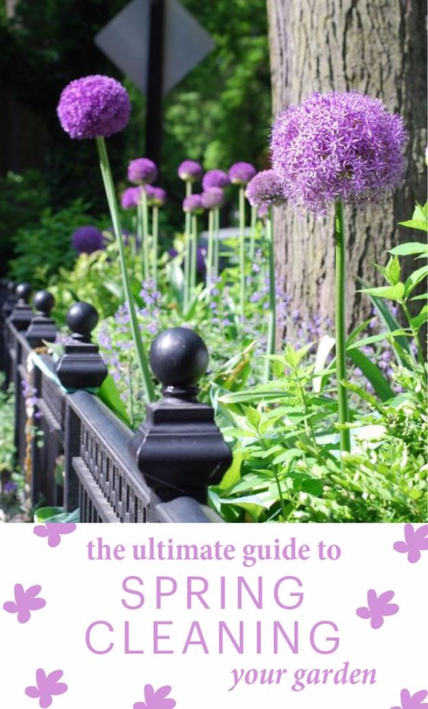31 Awesome DIY Tips for Spring Gardening   Project ideas, Creative ...