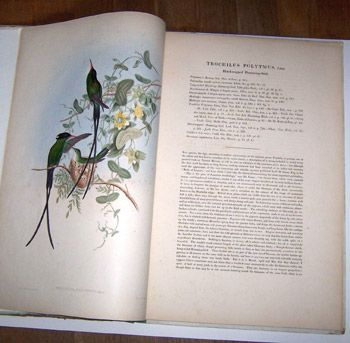 Book illustrated by John Gould