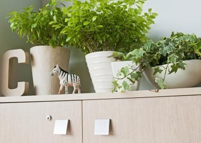 Smaller Single Color Various Shaped Planters To Green Up Cubicle