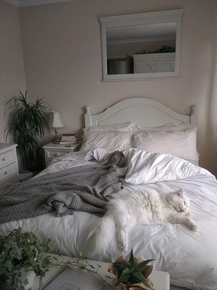 Weiß Graue Schlafzimmer, Schlafzimmer Pflanzen, Loft Ideen, Schlafzimmer  Ideen, Natur, Tiere, Weiße Katzen