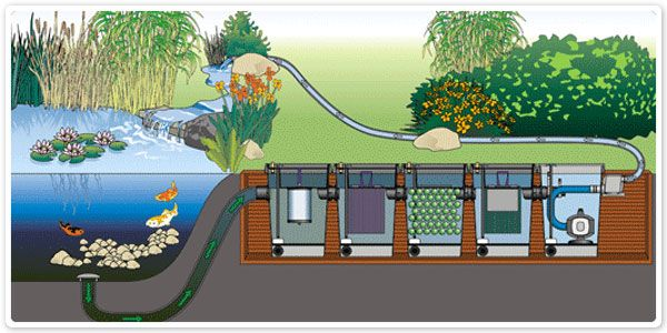 Pond waterfall system google haku fish pond technic for Pond filter system design