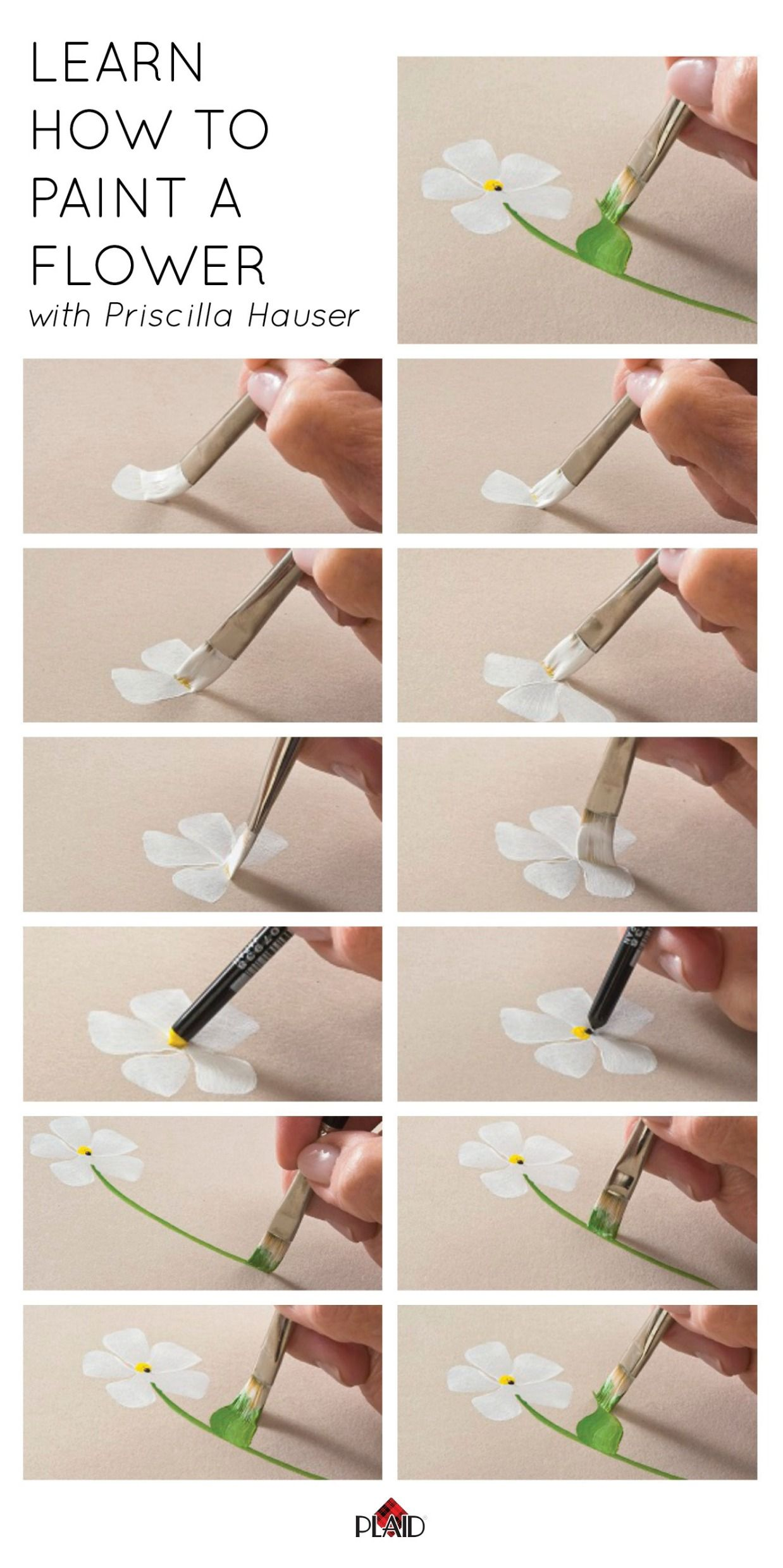 Learn How To Paint A Five Petal Flower With Priscilla Hauser Super Easy Step By Steps Plaidcrafts DIY