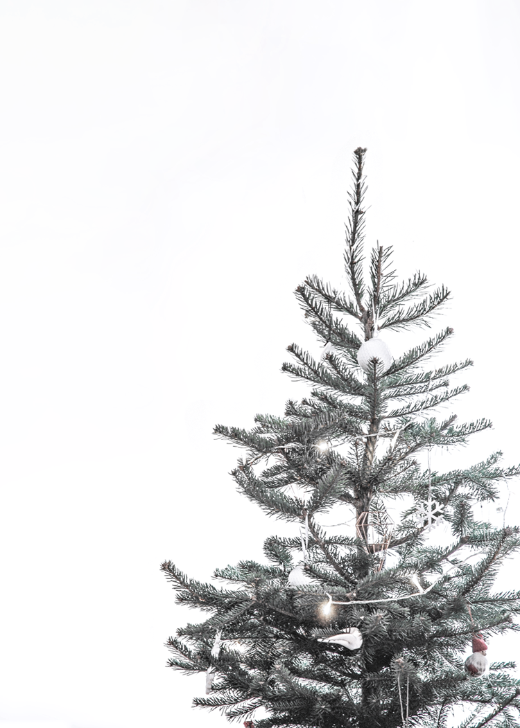 Happy Holidays Only Deco Love Christmas Tree Wallpaper Christmas Tree Wallpaper Iphone Wallpaper Iphone Christmas