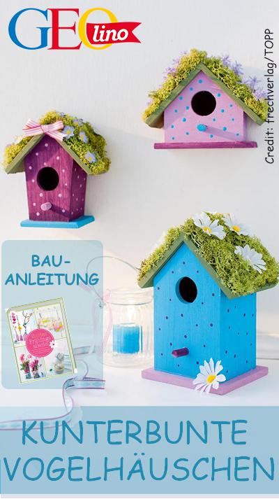 Vogelhäuser bauen