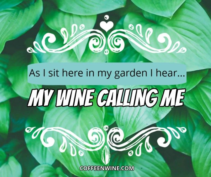 Top 13 Wine Tumblr Quotes Tumblr Wine Image Quotes To Share