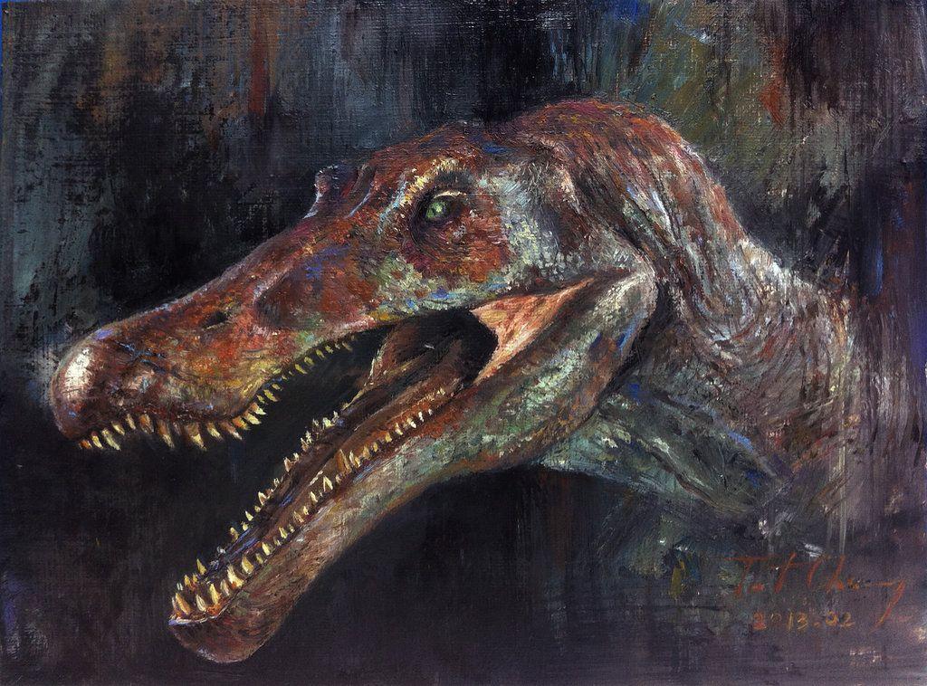 Study of Dinosaurs, science - information - Dinosaur Fossils