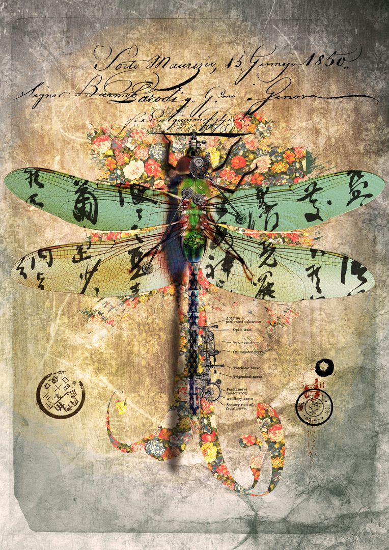 Beautiful collage Mixed media collage … | Pinteres…