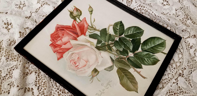 Roses /& Clematis by Paul de Longpre Art Print of Vintage Art