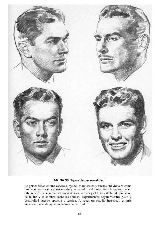 62 LAMINA 36. Tipos de personalidad La personalidad en una cabeza surge de los músculos y huesos individuales como nos lo ...