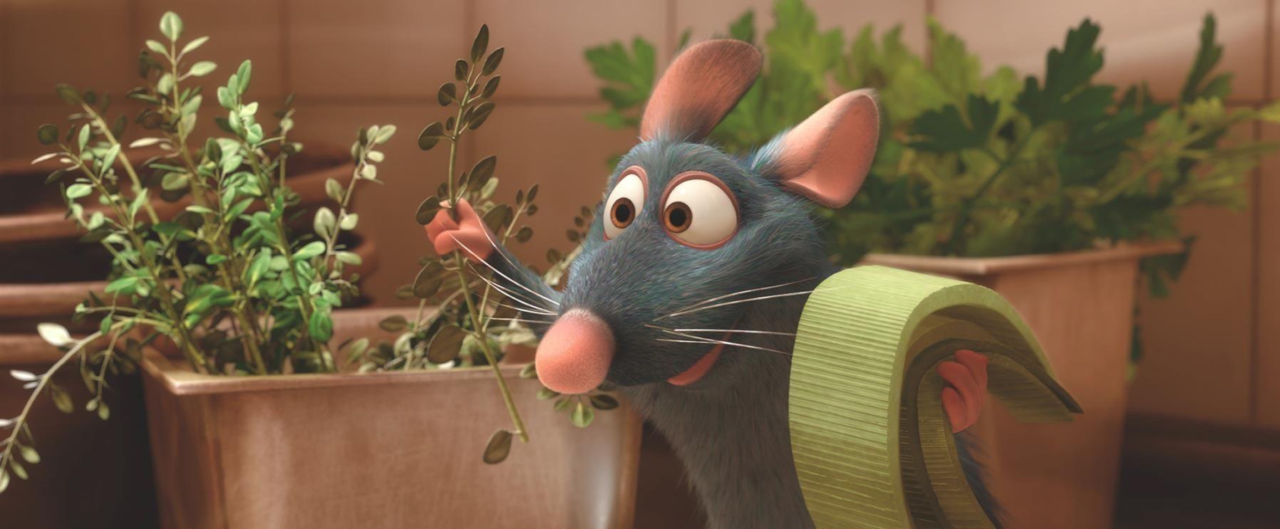 Pin by cherrys world on childhood memories ratatouille