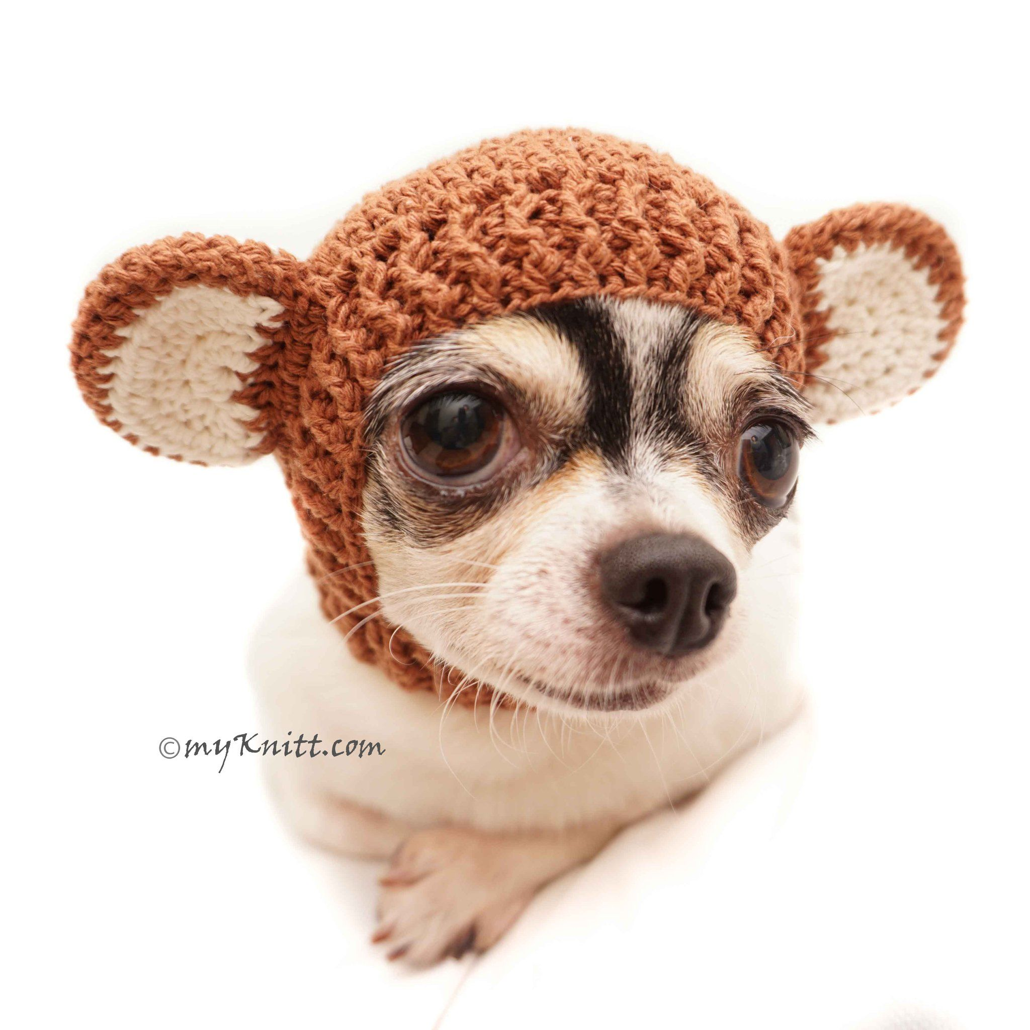 Monkey Dog Hats Crochet Dog Hat Cat Hats Db8 Dog Sweaters