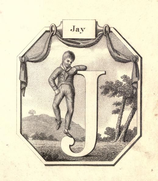 """Jay"" (J) ~ Vintage Children's ABC Flash Card"