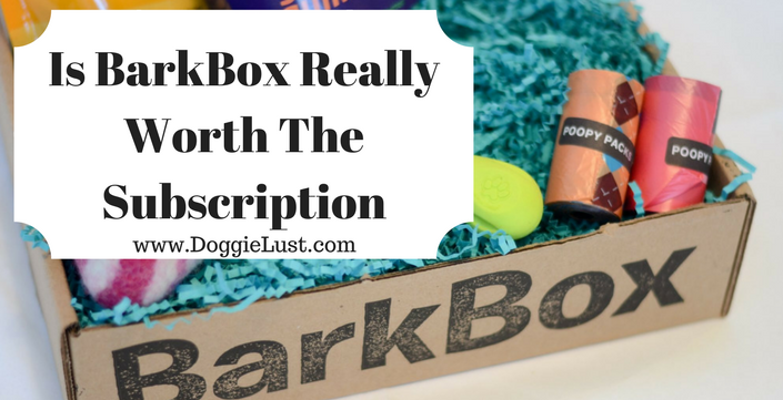 Is BarkBox Really Worth The Subscription BarkBox Review