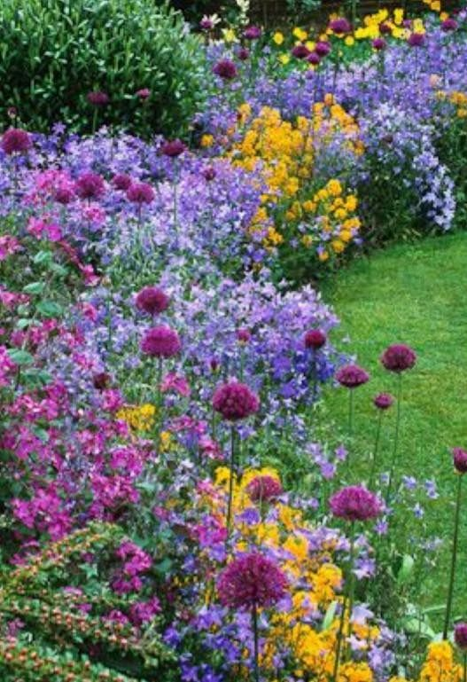 Beautiful Border Of Mixed Flowers A Delight To Behold