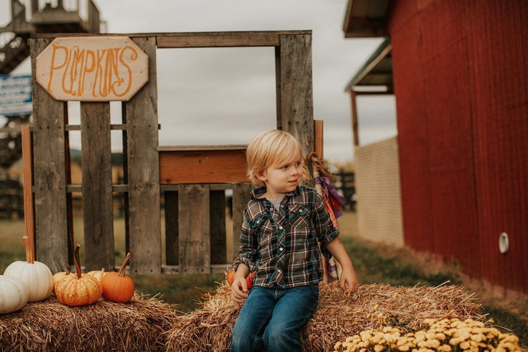 "Asheville Photographer on Instagram ""Happy Halloween"