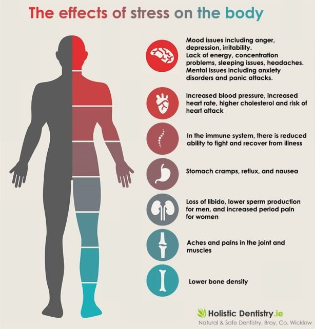 stress and its effects on the human body This effect, when combined with stress, can cause the heart rate to increase as much as 38 beats a minute) stress can interfere with the body's ability to repair itself, including slower repair.