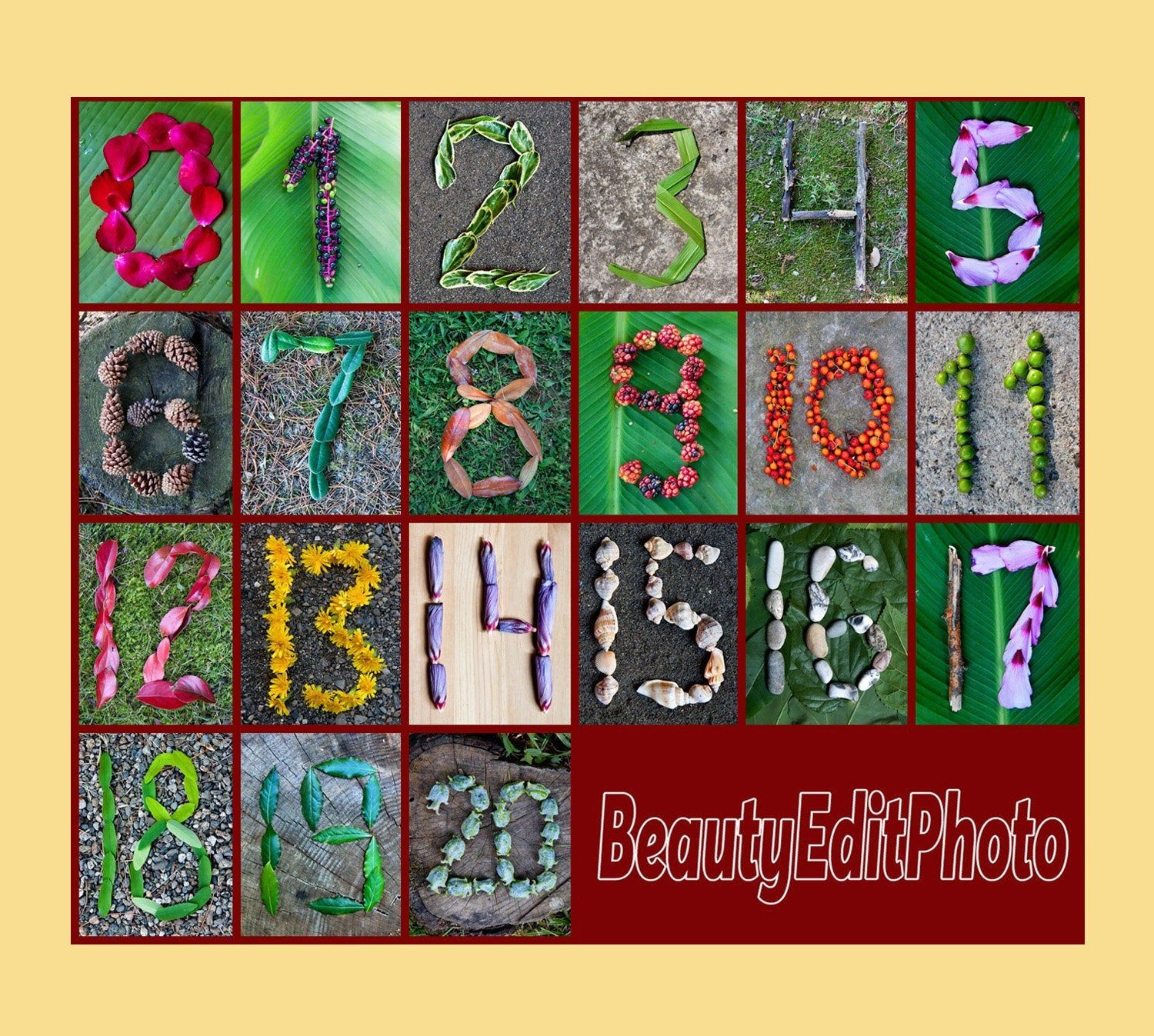 Numbers Wall Art Number Poster Nature Inspired Classroom