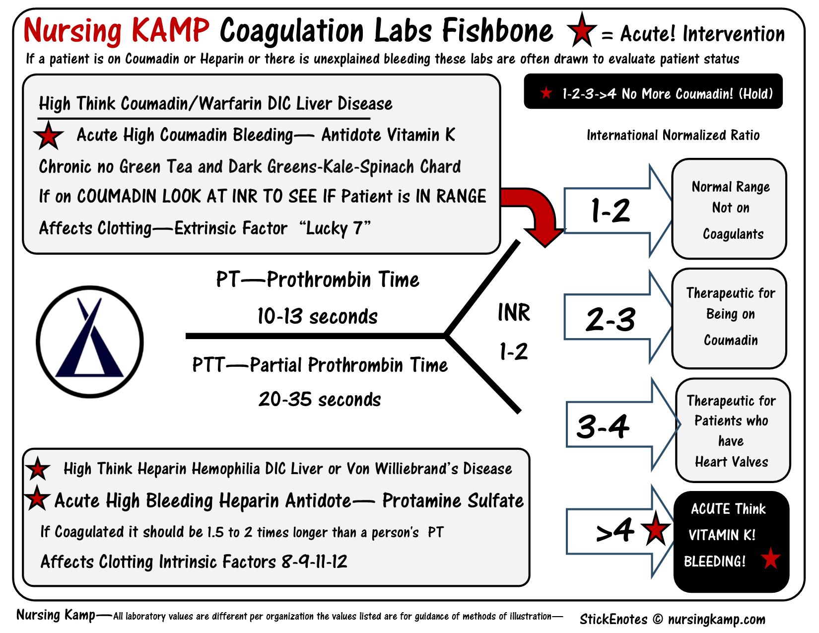 Pt Inr Coumadin Coagulation Labs