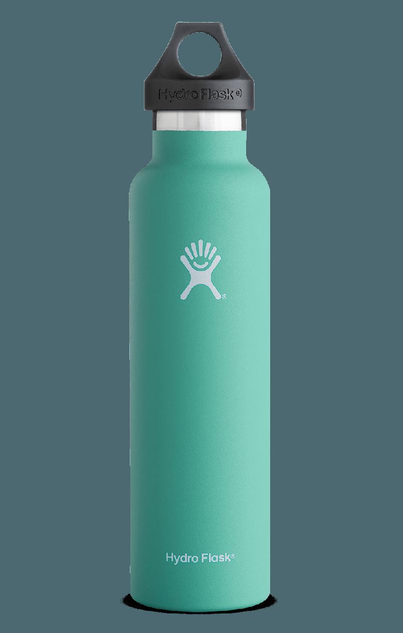 24 Oz Standard Mouth Hydro Flask Water Bottle Hydro Flask 24 Oz Hydroflask