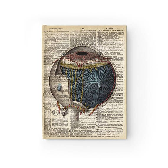 Vintage Eye Anatomy Notebook Journal Blank Book Ruled Line ...