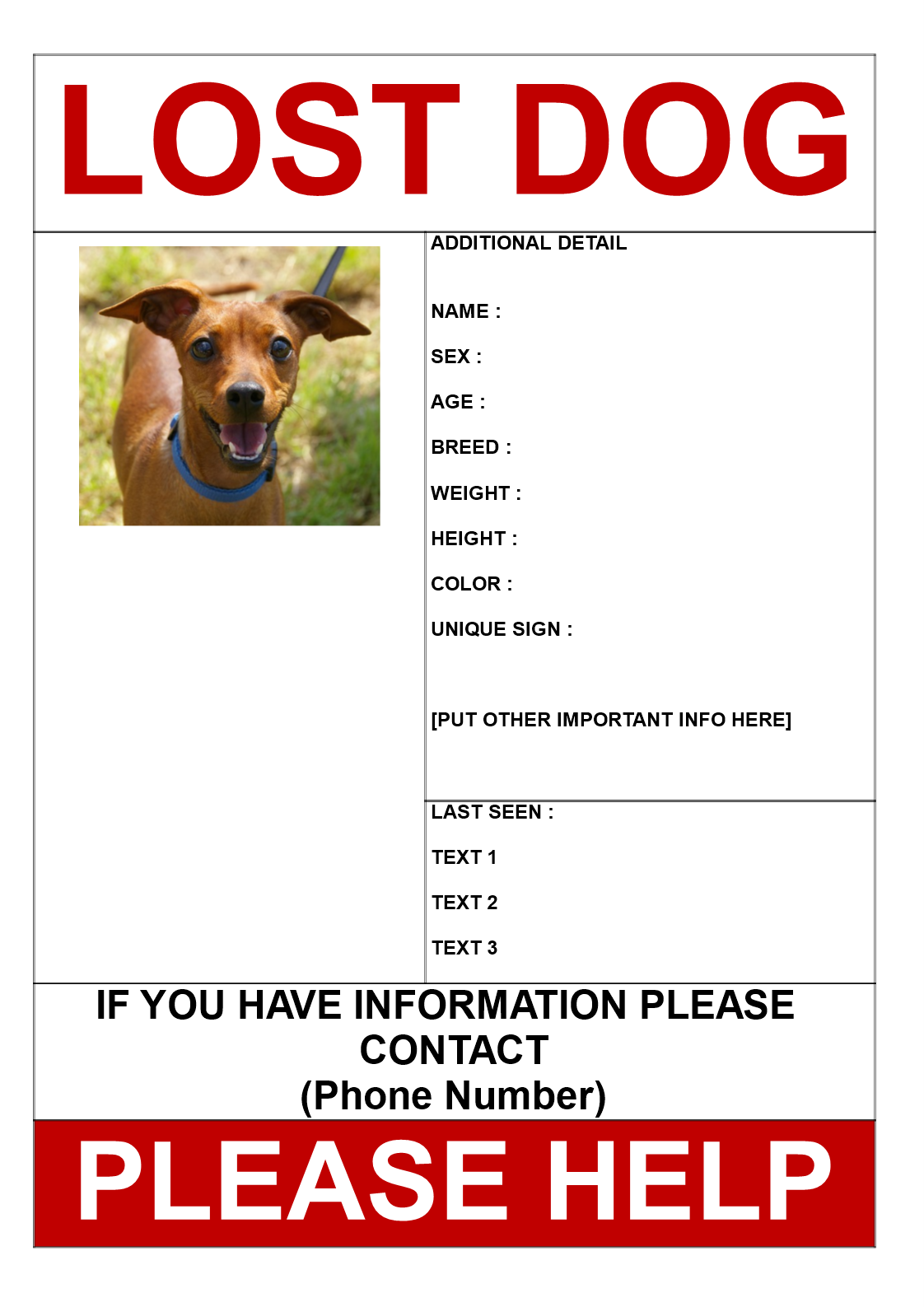 Find Missing Dog Poster Template  Find Missing Dog Poster
